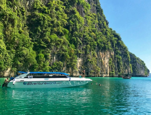 Phi Phi Islands X-Large