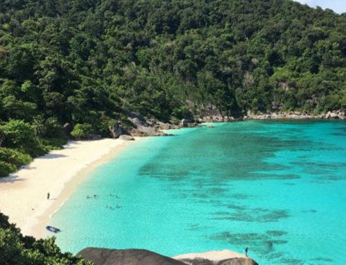 Similan islands & Koh Bon early bird trip From Khao lak