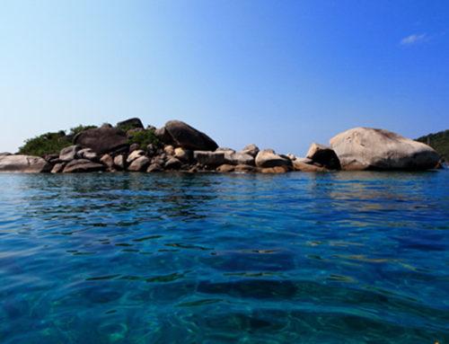 2 Days 1 Night Trip Similan Island From Phuket